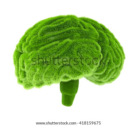 The human brain is covered with green grass. The metaphor of the wild, natural or imperfect intelligence in the design of information related to eco. 3d illustration - stock photo