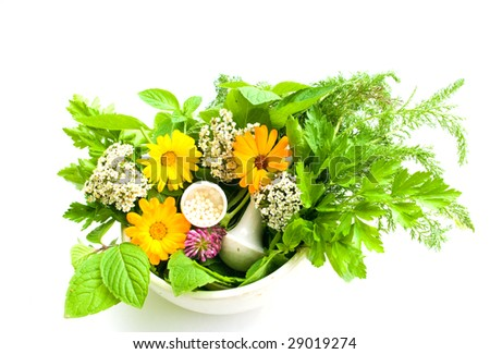 the image homoeopathic granules and herbs