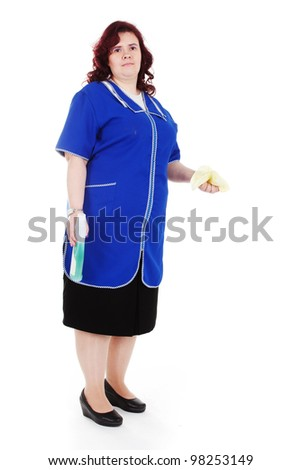 the image of cleaner with duster - stock photo