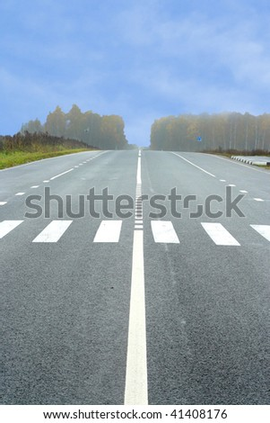The image of country road with zebra - stock photo