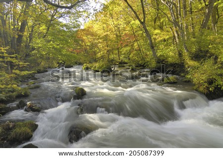 The Image Of The Flowing Water Of Stream - stock photo