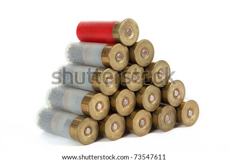 The image of the hunting cartridges, isolated, on a white background - stock photo