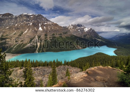 The incredible turqquoise blue water of Peyto Lake in Banff National Park in Alberta Canada's Rocky Mountains.