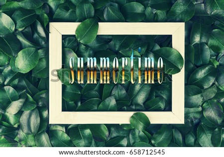 The inscription summertime in a white frame against a background of fresh and juicy green leaves. The concept: summer nature, summer vacation, travel.