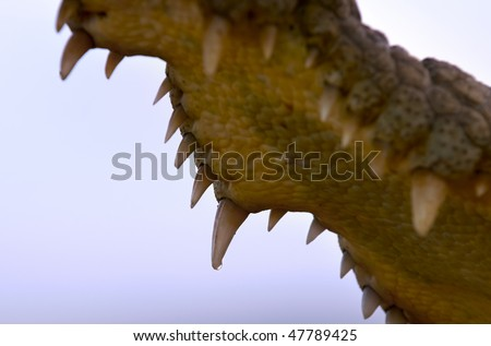The Inside of a Nile Crocodile's mouth with teeth against a blue sky - stock photo