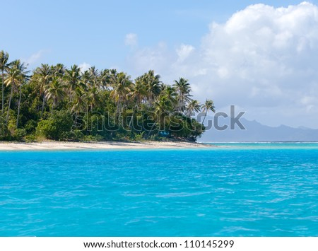 The island with palm trees in the ocean - stock photo