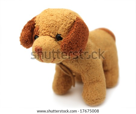 The isolated brown and beige doggy - stock photo