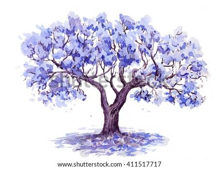 Jacaranda Trees Watercolor Sketch Stock Illustration 411517717