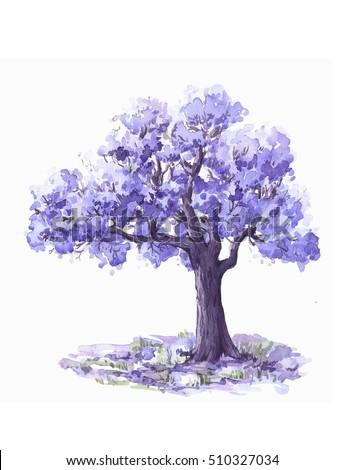 Jacaranda Trees Watercolor Sketch Stock Illustration 510327034