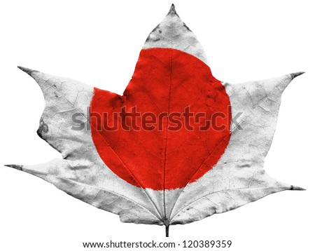 The Japan flag painted on  dried autumn leaf - stock photo