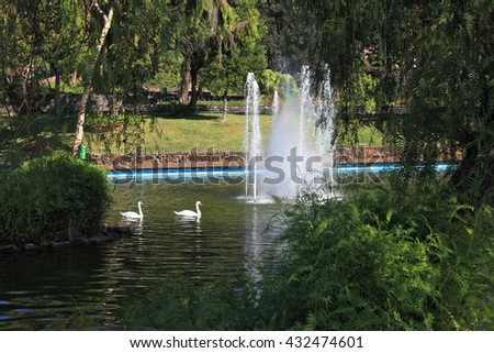 The lake with a fountain and the white swans around. Magnificent park at the resort