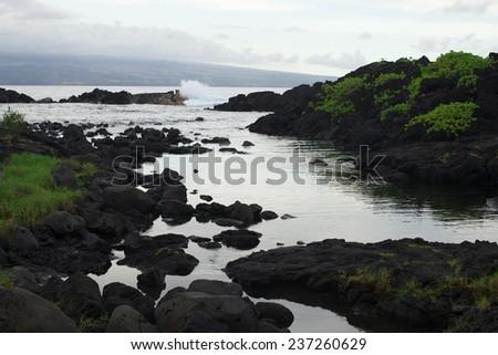 The landscape black stone near pacific ocean in Hawaii  - stock photo