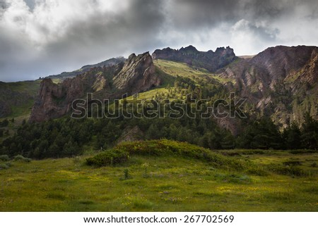 the landscape. mountain landscape with alpine meadows and pine forest - stock photo