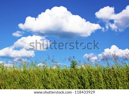 The landscape of the Sunny warm weather with vegetation and clouds. - stock photo