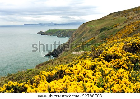 The landscape with coastline and a lighthouse of Howth Head, Ireland. - stock photo