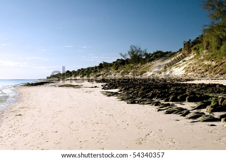 The landscape with sand dune on a beach.