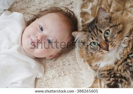 The large house cat lying near newborn baby - stock photo