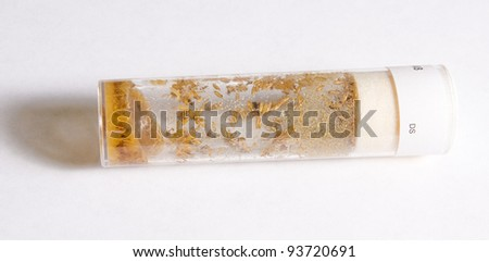 The larvae of Drosophila flies in the test tube with nutrient solution on a white background - stock photo