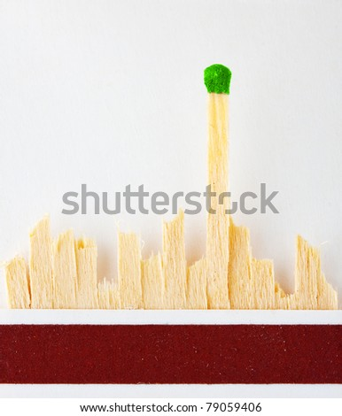 The last green match standing in matchbook - stock photo