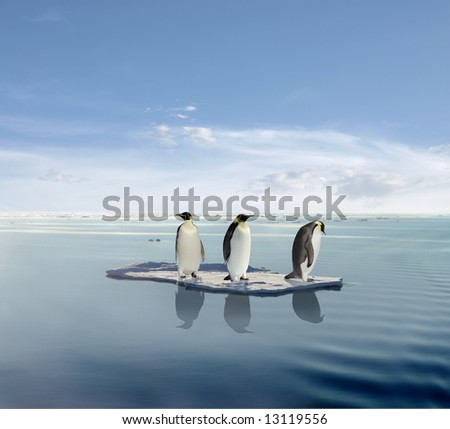 The last penguin survivers. - stock photo