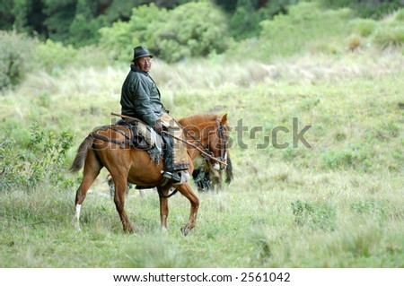 the latin horseman (gaucho). ecuador. south america - stock photo