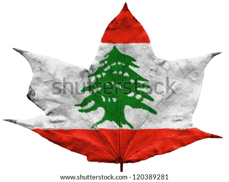 The Lebanese flag painted on dried autumn leaf - stock photo