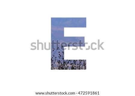 "The letter ""E"" with plantation fence and the earth background insided"