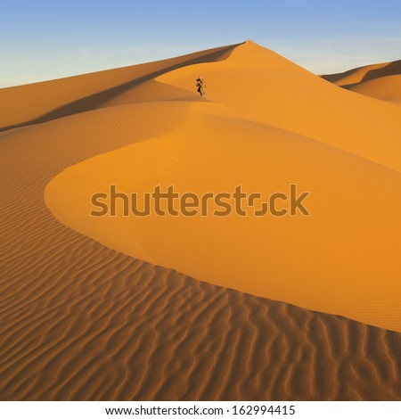 The Libyan desert - a fantastic place for travelers and photographers. Beautiful structure of dense yellow sand, dune of the huge sizes and deep sky of Sahara.