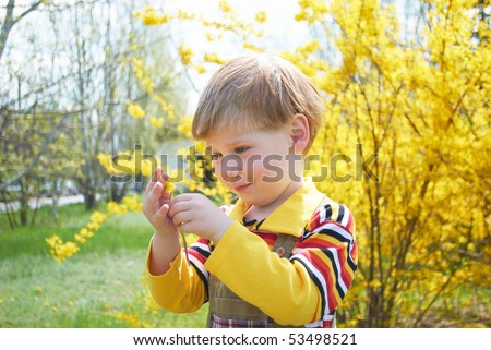 The little boy with a yellow flower - stock photo