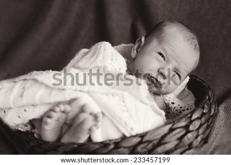 the little funny   newborn in the basket - stock photo