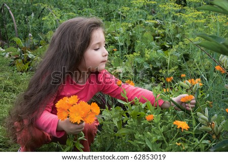 The little girl collects flowers