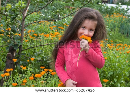 The little girl collects flowers - stock photo