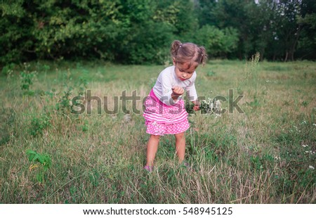 The little girl in a pink skirt collects in the summer wild flowers in the field
