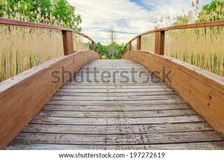 The Long Walk Home.  Bridge curves over a ravine and stretches to the horizon.   - stock photo