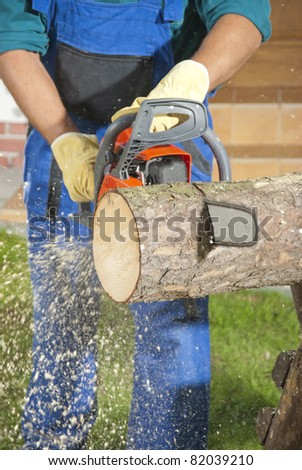 The lumberjack cutting the log of wood - stock photo