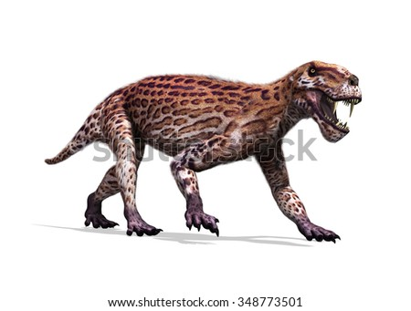 The Lycaenops was a prehistoric therapsid (mammal-like reptile) that lived during the Permian period. - stock photo