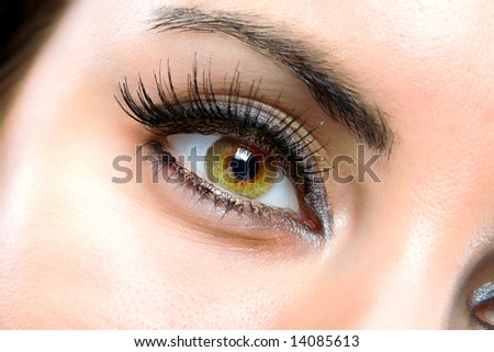 The macro beautiful female eye - stock photo