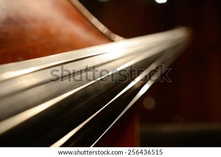 The magnificent violin. - stock photo