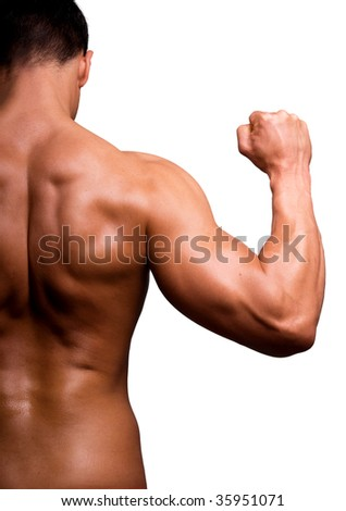 The male body isolated on white background. - stock photo