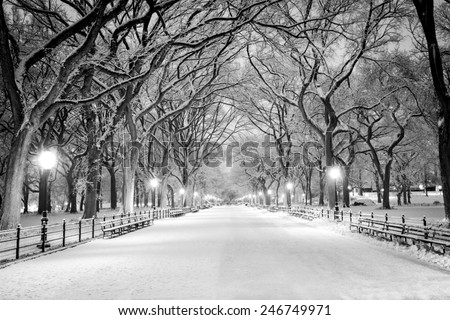 The Mall in Central Park, NYC, during a snow storm, early in the morning. - stock photo