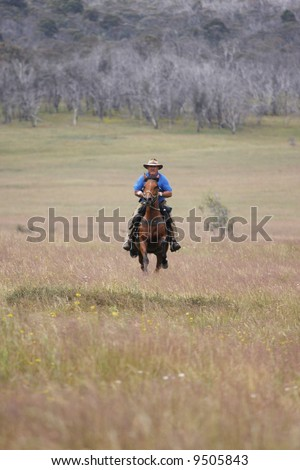The man from Snowy Mountains riding a horse at full gallop - stock photo
