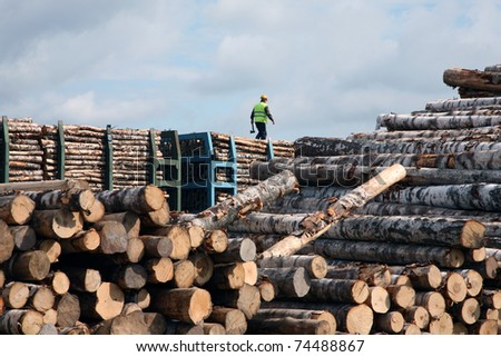The man goes on the top of a cup in warehouse of logs - stock photo