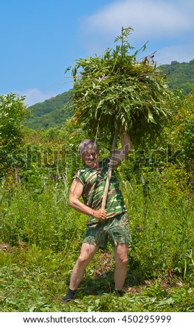 The man is carrying a hay with hayfork on green meadow. - stock photo