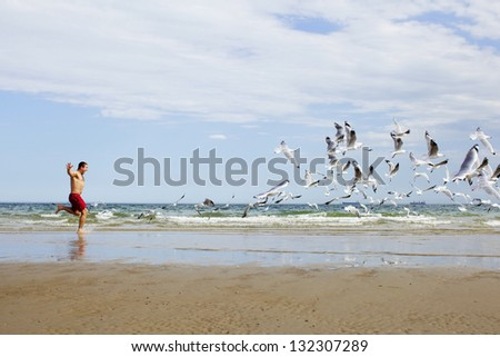 The man is running for sea birds on the beach - stock photo