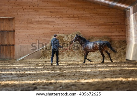 The man training his horse in manege - stock photo