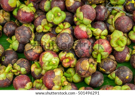 The mangosteen background
