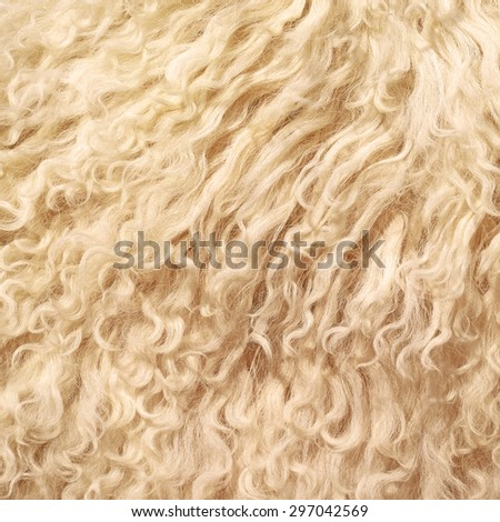 The manufactured skin of a sheep - stock photo