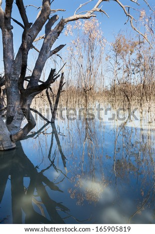 The Menindee Lakes is a chain of shallow ephemeral freshwater lakes connected to the Darling River to form a storage system. The lakes lie in the far west region of New South Wales, Australia - stock photo