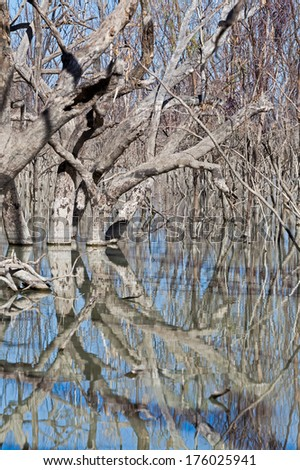 The Menindee Lakes is a chain of shallow lakes connected to the Darling River to form a storage system. The lakes lie in the far west region of New South Wales, Australia
