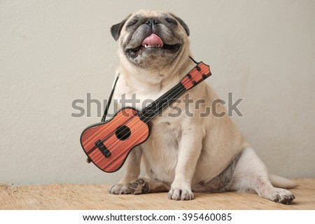 The Mexican indy guitarist musician pug dog.(Pug dog wearing Musician costume with antique film filter.) - stock photo